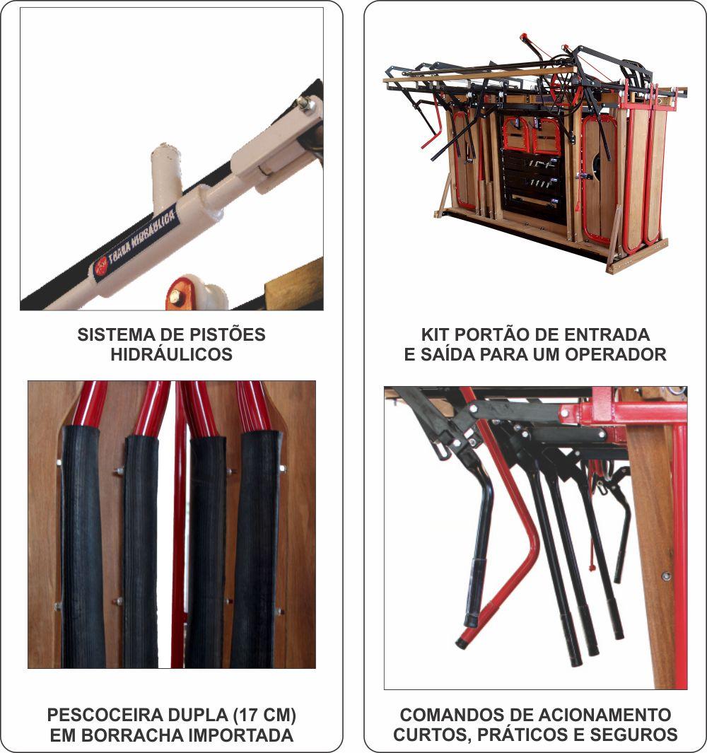 Tronco Americano Premium II