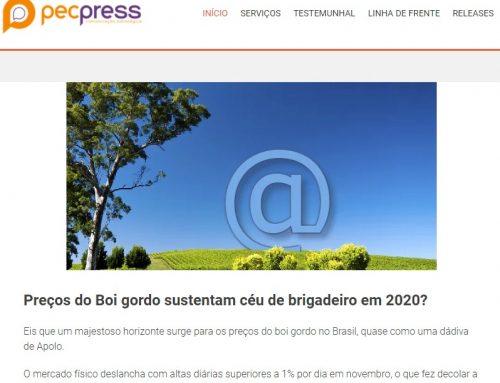 Preços do Boi gordo sustentam céu de brigadeiro em 2020?